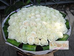 Flower Delivery Free Shipping Buy Free Shipping 99 White Roses Flowers Birthday Flowers To Marry