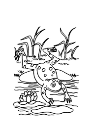 green frog coloring animal coloring pages