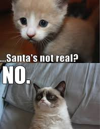 Meme Angry Cat - santa no grumpy cat cat and memes