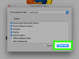 How To Clear Google Maps History 3 Ways To Clear Internet History On A Mac Wikihow