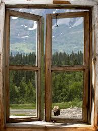 kids cabin theme bedrooms rustic decor rustic wall mural bear view