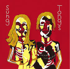 animal collective sung tongs 2004 album cover art