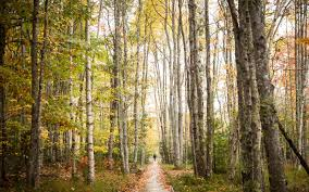 england fall foliage photos travel leisure