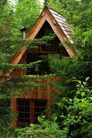 forest house this amazing forest house was built for just 11 000 with locally