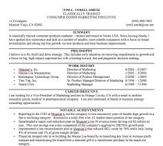 Best Resume Summary Examples by 28 Resume Summary Statement Examples Examples Of Resume
