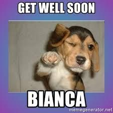 Meme Get Well Soon - get well soon bianca get well soon pup meme generator
