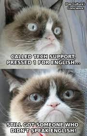 Image 9 Best Grumpy Cat - 9 best my grumpy cat memes images on pinterest cat memes grumpy