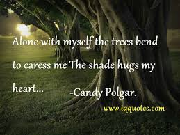 tree quotes nature and tree quotes tree quotations