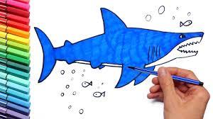 shark drawing coloring kids teaching paint