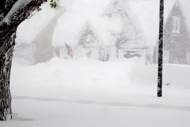 Photos Of Snow Buffalo Bills Players Seem To Be Enjoying The Snow Storm Huffpost