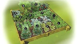 Permaculture Vegetable Garden Layout Vegetable Garden Layouts Small Raised Bed Vegetable Garden Garden