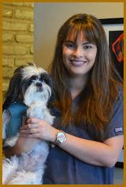 paws veterinary center veterinarian in tucson az usa meet
