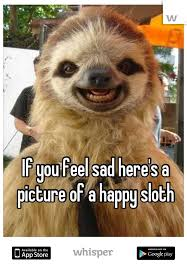 Sloth Whisper Meme - you feel sad here s a picture of a happy sloth