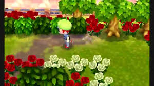 acnl shrubs animal crossing new leaf september and october youtube