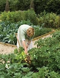 starting a vegetable garden from scratch sarah raven