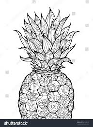 ananas pineapple exotic fruit floral pattern stock vector