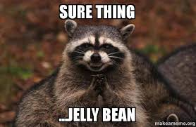 Jelly Meme - sure thing jelly bean evil plotting raccoon make a meme