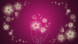 pink color images pink hd wallpaper and background photos 10579442 30 pink abstract hd wallpapers download