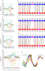 wide turn diversity in protein transmembrane helices implications