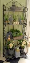 476 best nursery display ideas images on pinterest plants