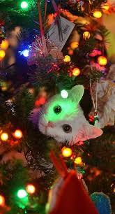 Brenda Lee Rockin Around The Christmas Tree Mp - 1000 best christmas 1000pin images on pinterest christmas time