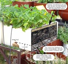 Vegetable Garden Soil Mix by Planting In Spring U2026 Surviving Through Summer U2013 Wicking Beds Are