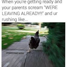 Funny Running Memes - 15 situations that will have you running like a chicken