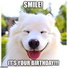 Dog Smiling Meme - dog smiling birthday