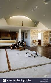 living room with sleeping dalmatian in penthouse apartment of
