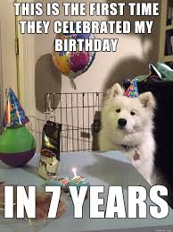 Birthday Dog Meme - birthday dog meme funny 14 dog best of the funny meme