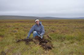 tundra finds toxic mercury is accumulating in the arctic tundra