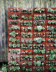 Vertical Garden Walls by Top 12 Succulent Diy Projects Bricks Gardens And Walls