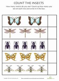 all about bugs 9 insect counting worksheets education com