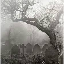 a atmospheric walk through a cemetery shrouded in mist what
