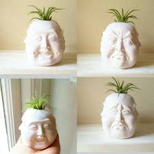 these skull planters are cute and totally bad to the