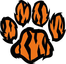 tiger paw print vector illustration annthegran