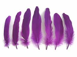 purple feather goose satinettes feathers moonlight feather