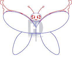 draw cartoon butterfly step step darkonator