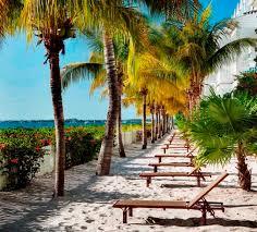 8 best florida road trip key largo to key west images on