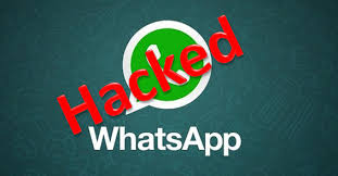 whatsapp free for android whatsapp free for android smartphone apk app
