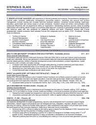 Sample Airlines Ticketing Agent Cv 28 Resume Sample For Hospital Jobs Best Resume For Hospital