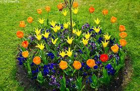 small flower garden designs wonderful flower garden designs