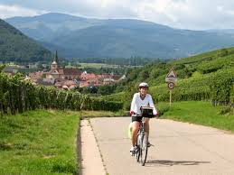 bike tours in germany active adventure tours