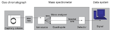 schematic diagram of gcms computer system modified after smith rm