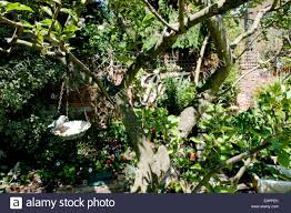 garden ornaments hanging from tree in back garden kingston upon