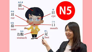 japanese class online online japanese n5 course all 15 lessons udemy