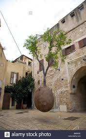 the hanging tree in yafo tel aviv israel stock photo