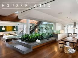 floor house plants arts
