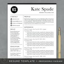 resume format it professional best professional resume format best ideas about professional resume