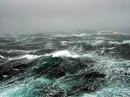 glen brown hurricane irma